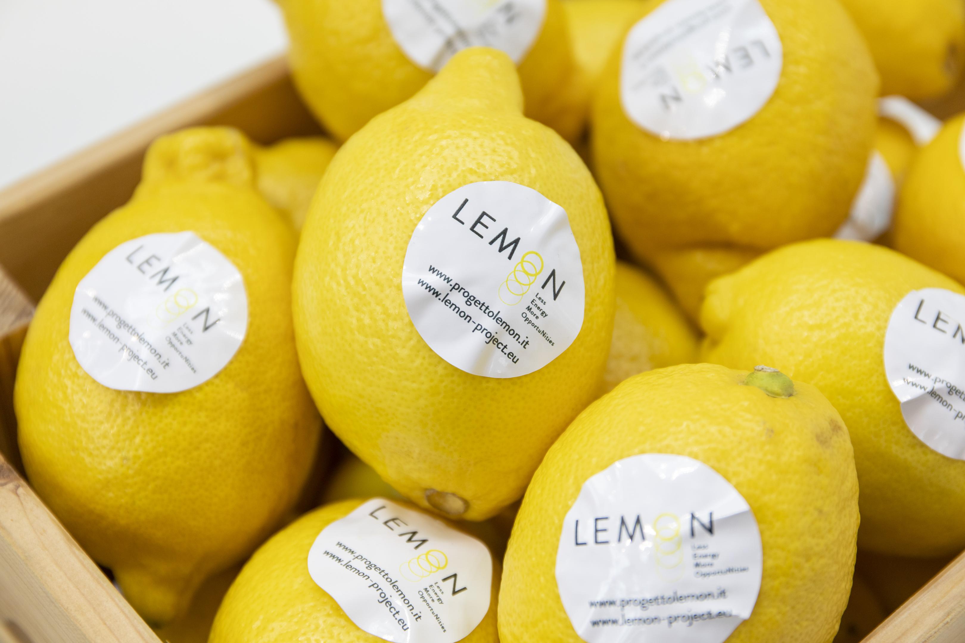 Labidee_Lemon_2019-11-05_D4_3388_©AndreaRanzi_web